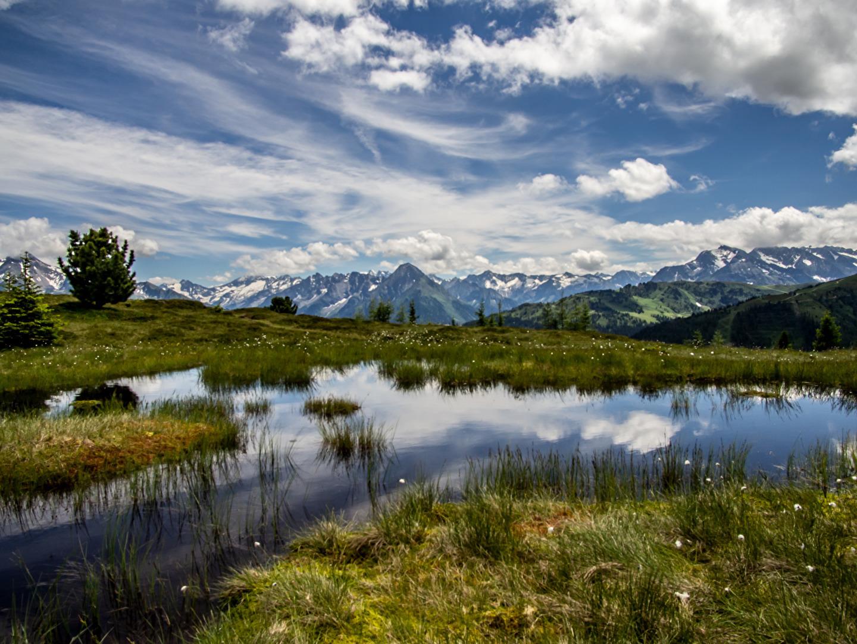 Frühsommer in den Zillertaler Alpen