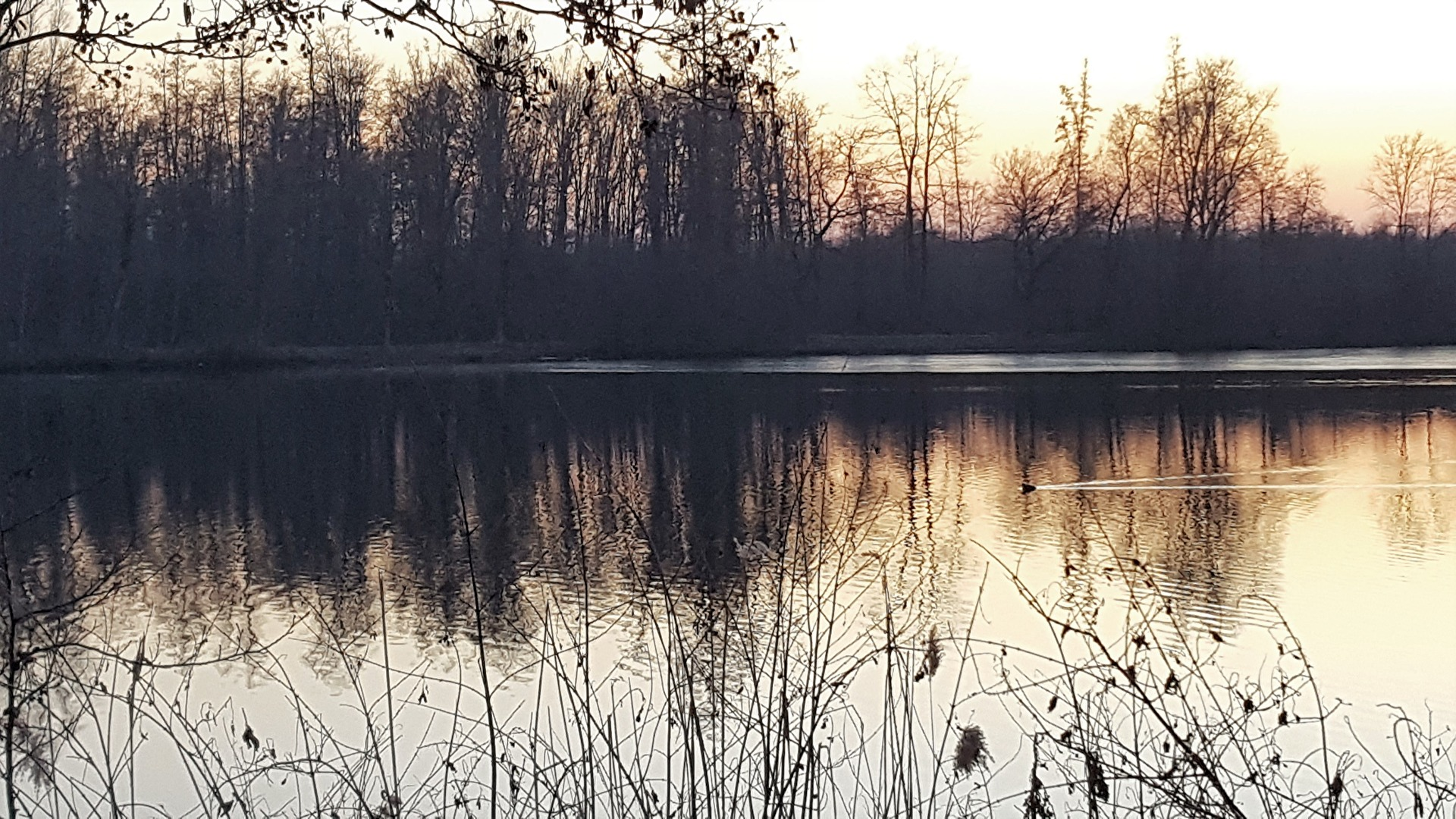 Nettebruch, Dämmerung/Sonnenuntergangsstimmung