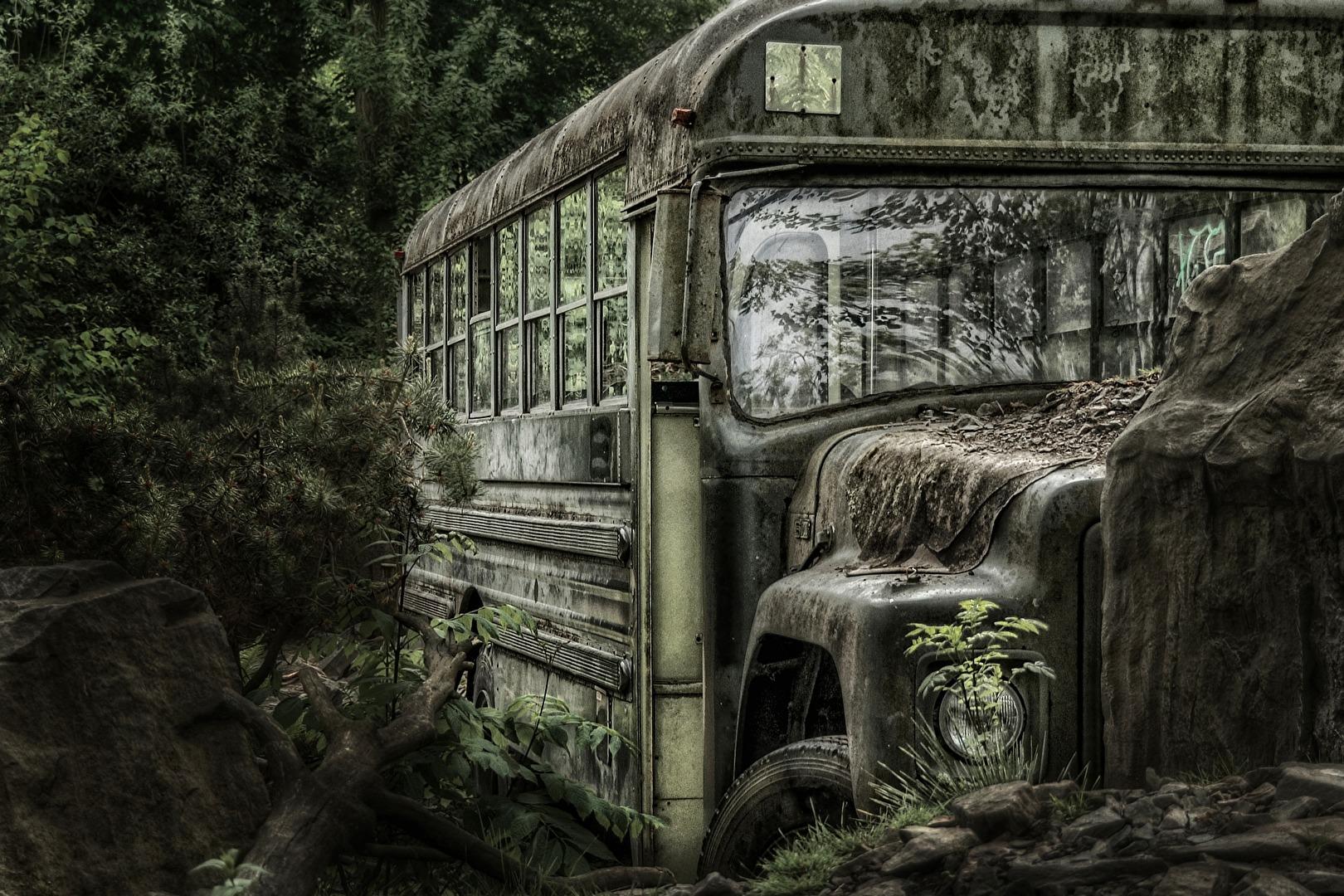 Forgotten bus