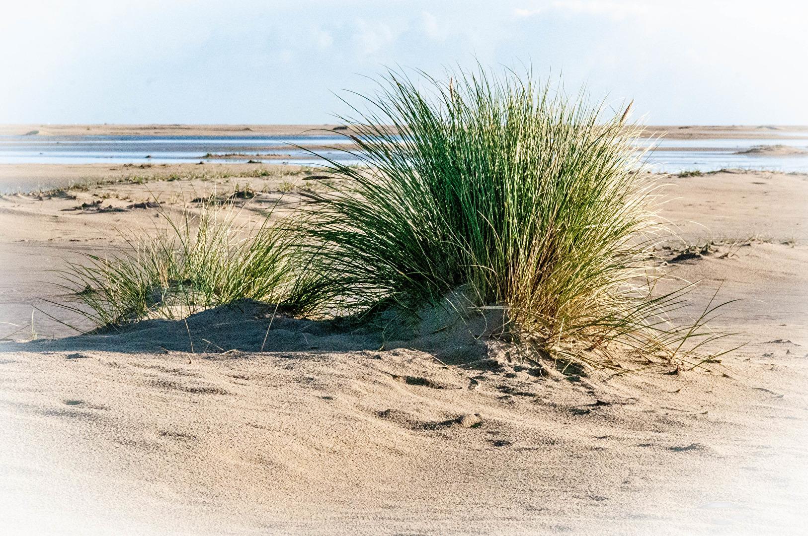 Meer & Strand (allgemein)
