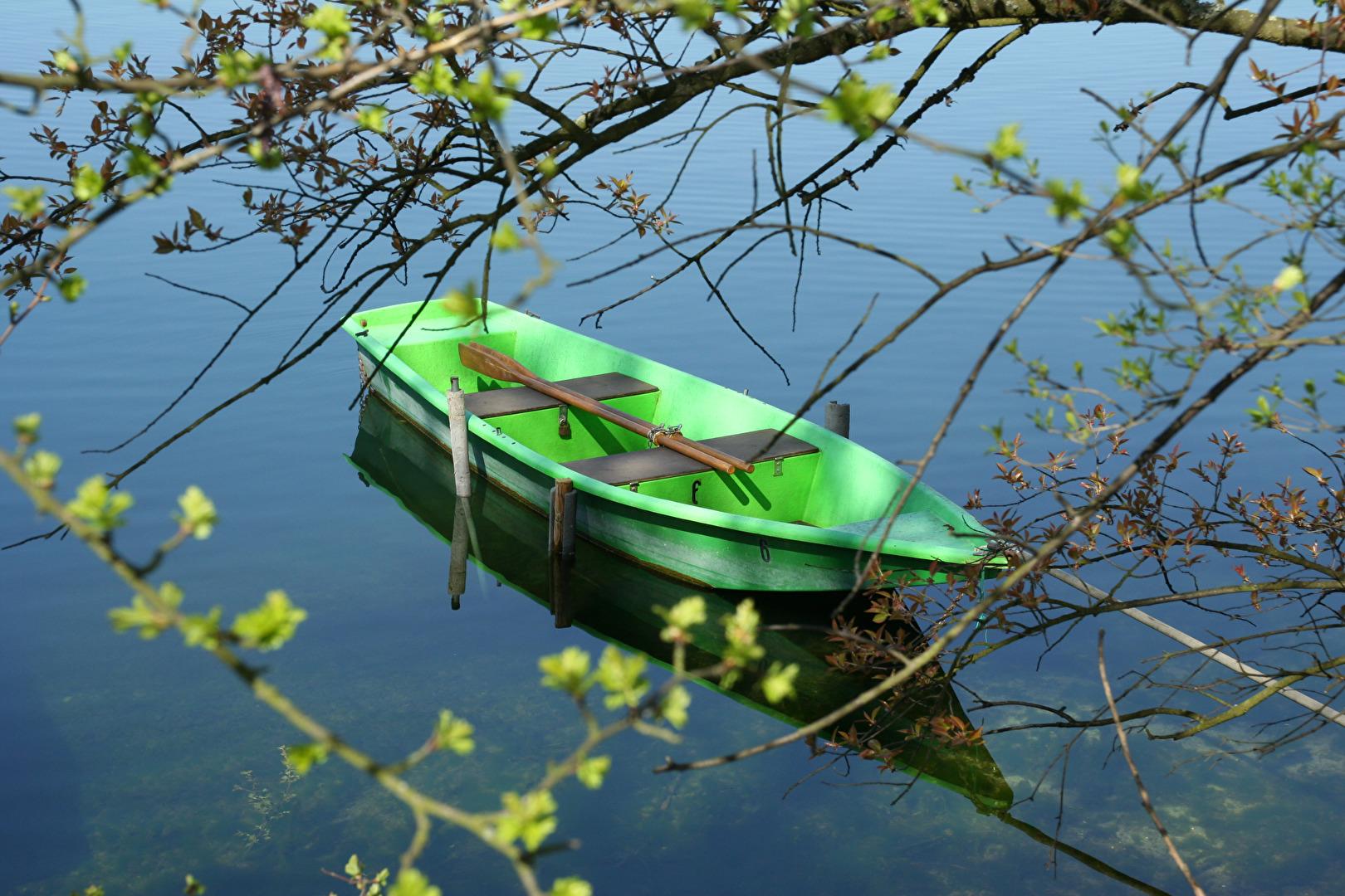 Wasser und Grün