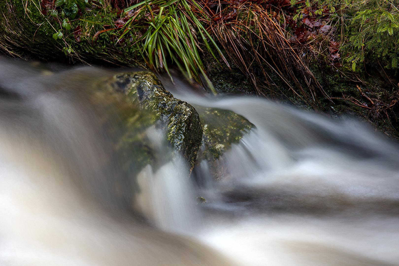 La roche dans l'eau