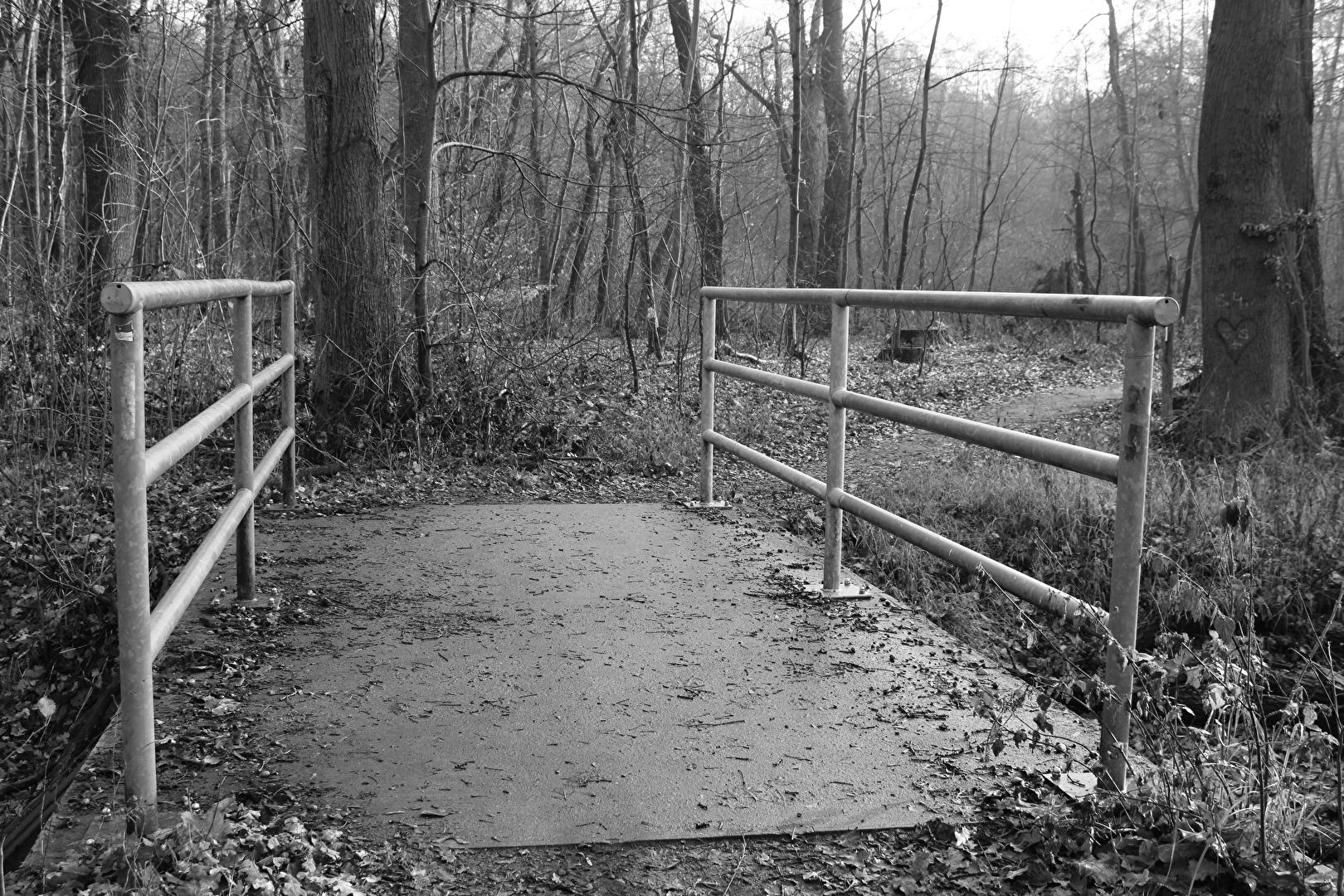Über diese Brücke musst Du gehen.